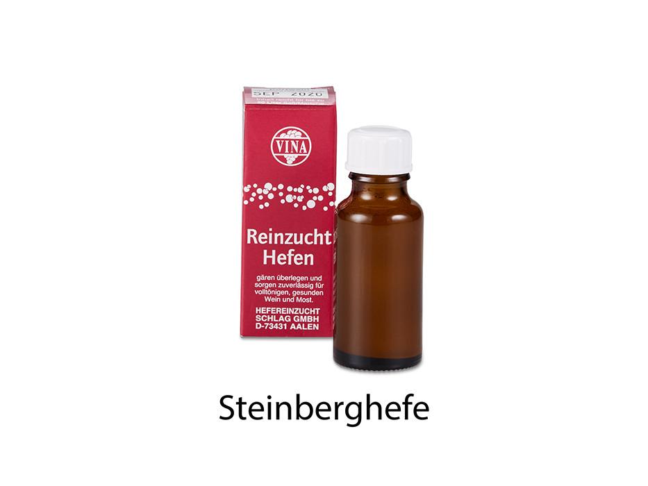 Steinberg yeast